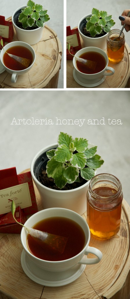 Artoleria honey and tea